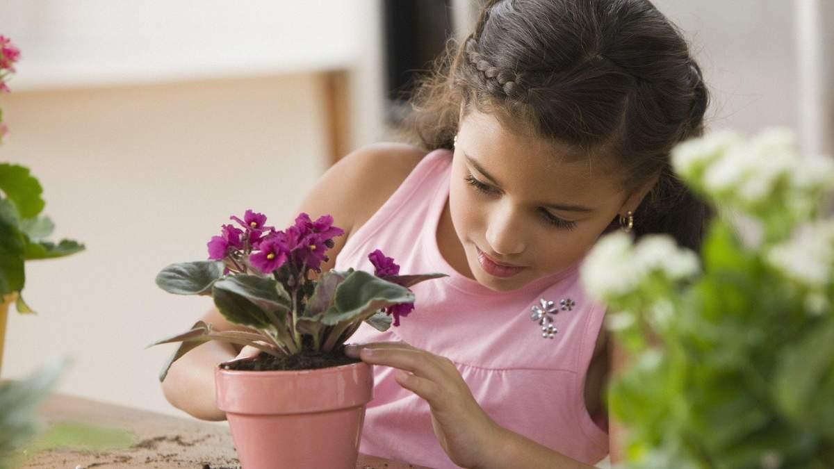 Какие вазоны должны быть в детской комнате