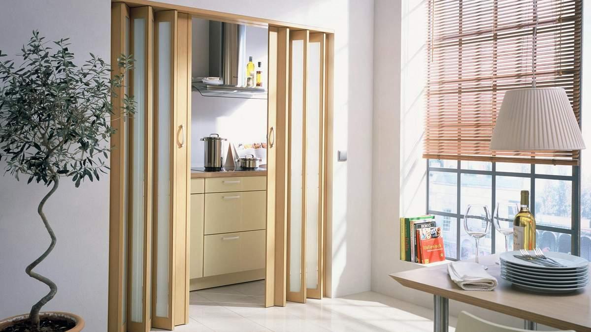 Двери гармошка – виды, плюсы и минусы, как установить