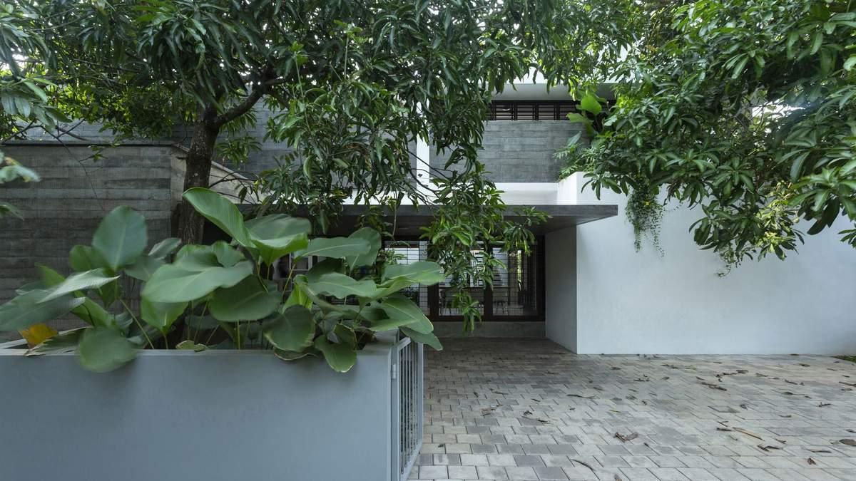 Квартира, в якій багато зелені, розташована в Алуві