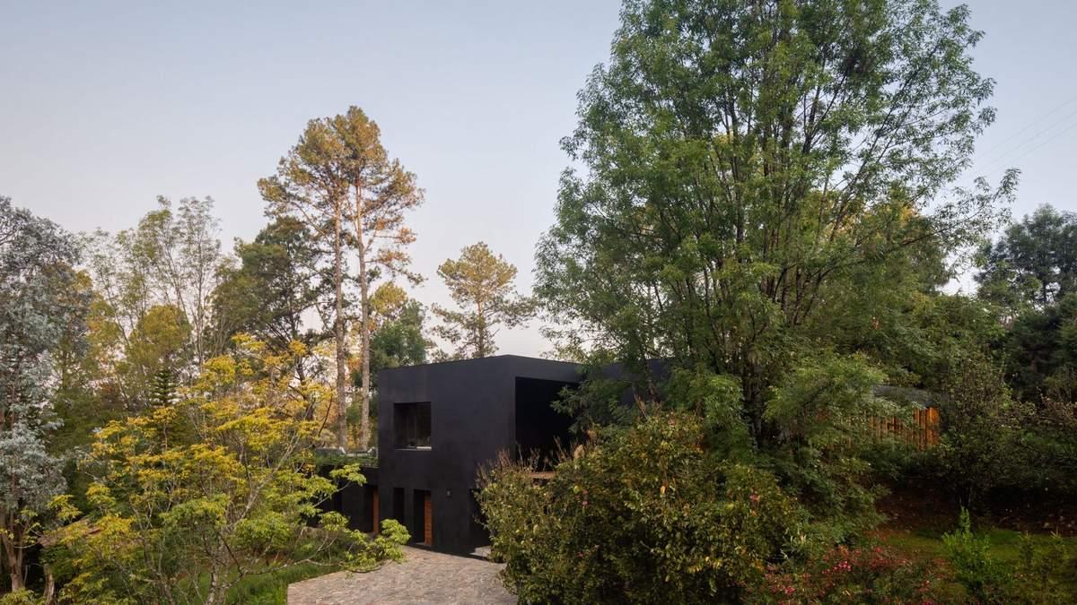 Черное на черном: в Мексике построили полностью черный дом с белыми интерьерами – фото