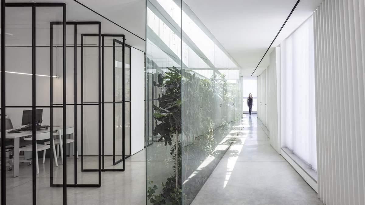 Стеклянная стена добавляет зелени в белый интерьер