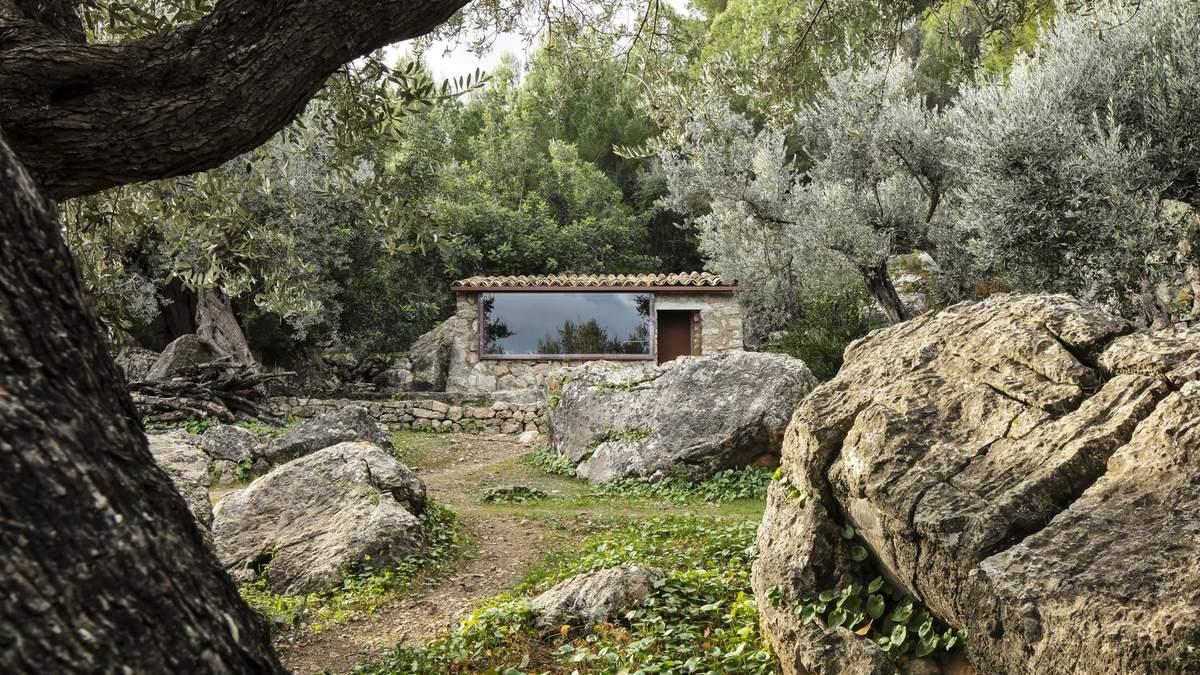 Дома гармонично вписываются в девственный ландшафт