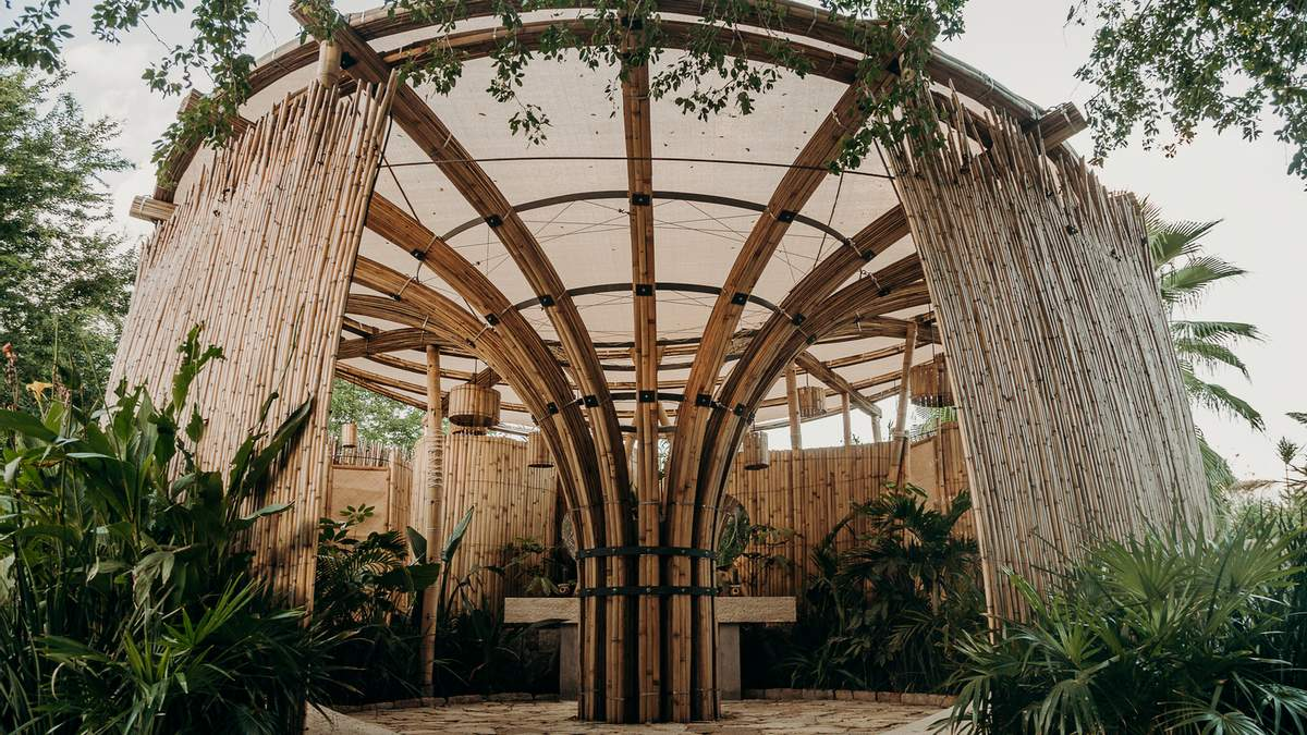 В Мексике открыли общественный туалет из бамбука – фото сооружения