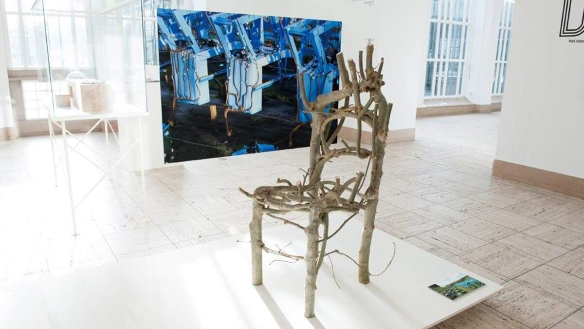 Мебель, растущая на грядке: британский дизайнер придумал оригинальный декор