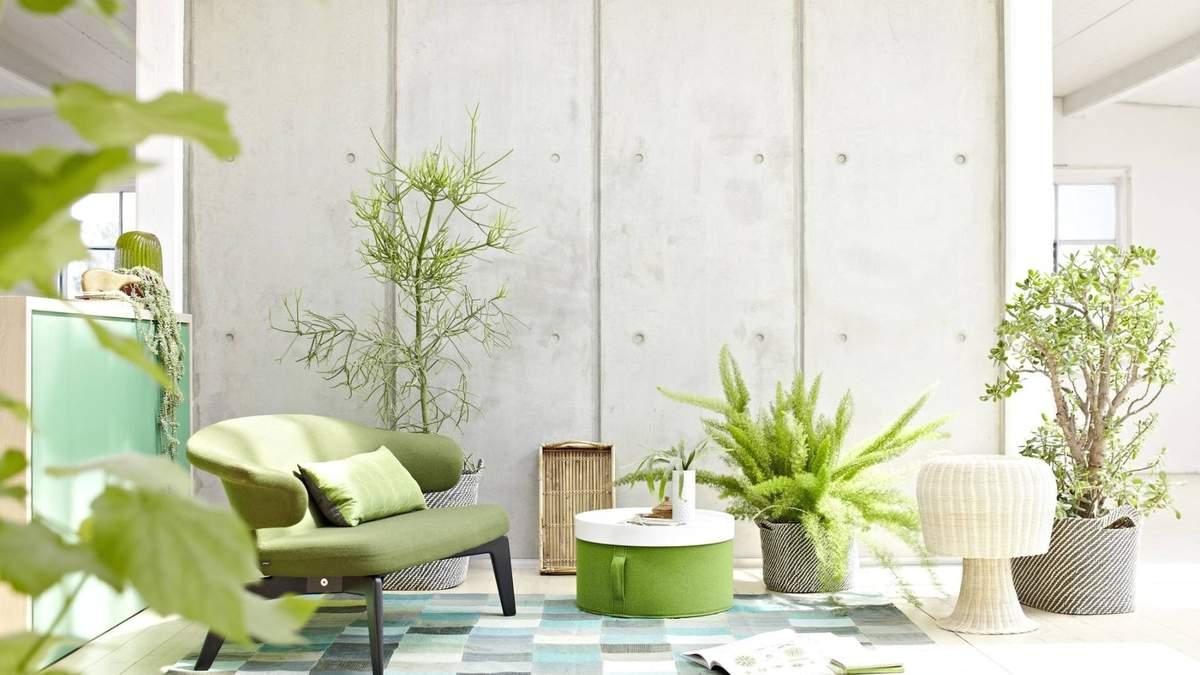 Вазони у спальні: добірка інтер'єрів з живими рослинами
