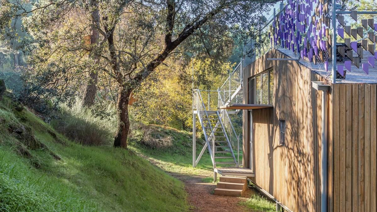 Красота из фанеры: дизайнер сделал себе маленький дом для жизни и работы – фото