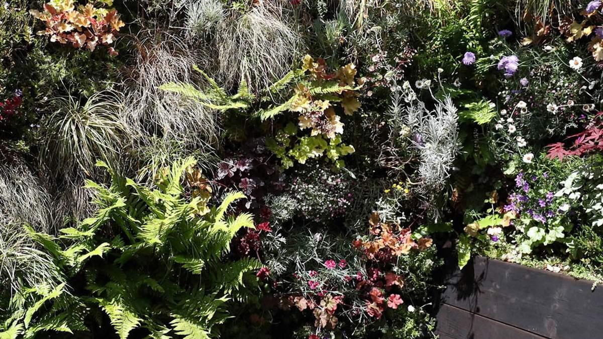 Зеленый рай: как превратить зону барбекю в уютный и гостеприимный уголок
