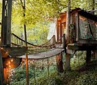 Мрія дітей і дорослих: 3 приголомшливих будинки на дереві – фото, відео