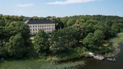 Життя в історії: як виглядає стильна сіра квартира у шведському замку