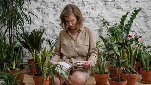 Як освіжити інтер'єр: 10 кімнатних рослин, які не потребують особливого догляду
