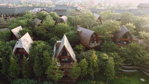 Пташині гнізда: як виглядають дивовижні хатини для релаксу та спокою