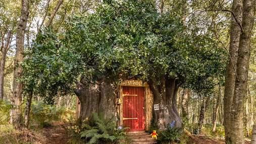Казка для туристів: як виглядає будинок Вінні-Пуха, в якому можна провести вікенд